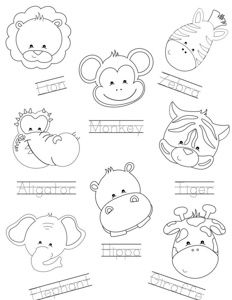 animal tracing.jpg